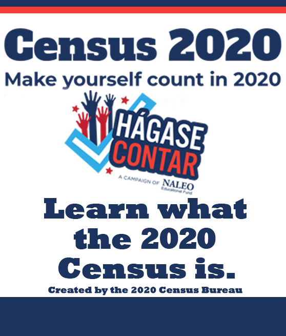 u.s. census 2020 information