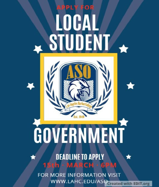 final local student government flyer graphic