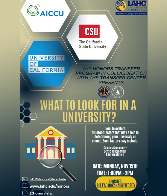 what to look for in a university workshop 11-15-21 flyer graphic